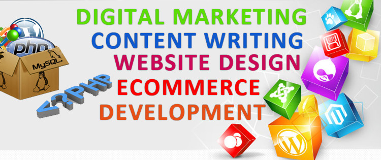 Your Guidelines For Choosing The Best Web Design Company In Sydney